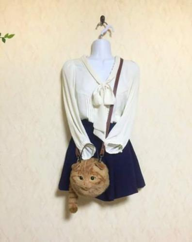 Bolsa-Gato