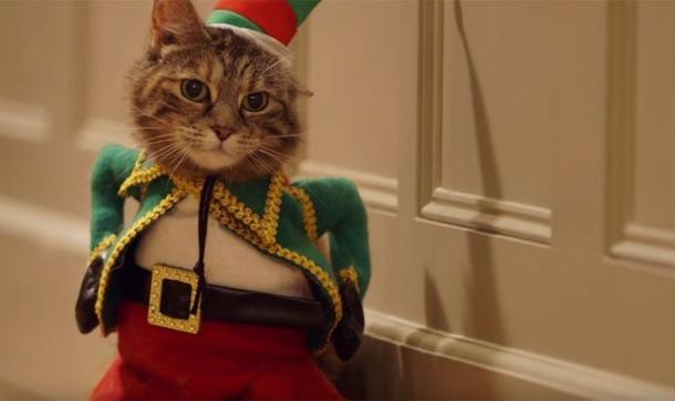 1. Temptations - Gatos e suas fantasias engraçadas de Natal
