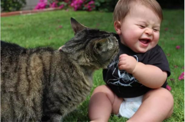 Levou um tempo para aceitar que o bebê veio para ficar, mas agora ele adora!