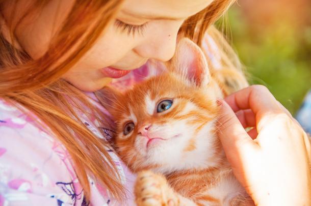 Crianças que crescem com gatos aprendem cedo a assumir responsabilidades