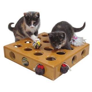 Ofereça brinquedos e distrações ao seu gato, evitando que ele fique entediado