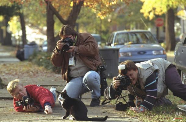 Socks sempre gerava disputa dos fotógrafos por seu melhor ângulo