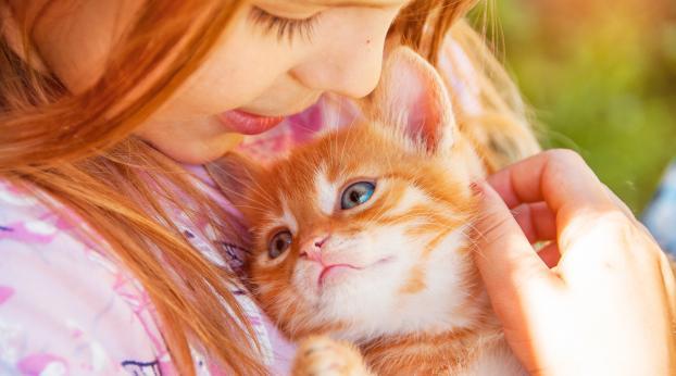 5 razões pelas quais as crianças devem crescer com gatos