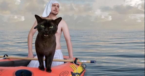 Este casal decidiu criar cenas famosas do cinema tendo como protagonistas seus gatos